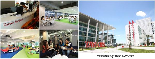 taylor-inec-2013